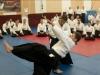 20-lat-centrum-aikido-012